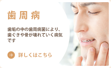 歯周病 歯垢の中の歯周病菌により、歯ぐきや骨が壊れていく病気です